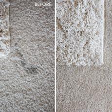 Bravo Carpet_Maria_3